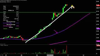 Sportsman's Warehouse Holdings, Inc. - SPWH Stock Chart Technical Analysis for 10-10-2019