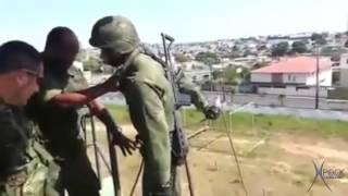 Animal Burrão Soldado idiota