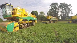 Swaythorpe growers Ploeger pea viners.2018 season. Video
