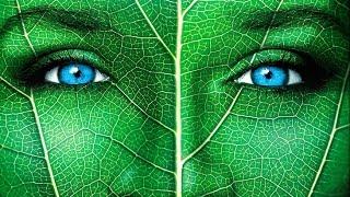 Что будет, если исчезнут растения?