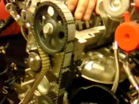 Fiat Timing Belt Wiring Diagram