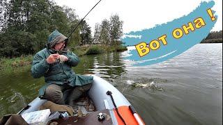 Этот клёв мы долго ждали Рыбалка на щуку