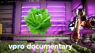 Digital Food: The Food Industry Of Tomorrow - Docu