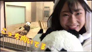 SKE48 team k2の14歳パンダ大好きなこっちゃんこと白井琴望です(*´`) 野...