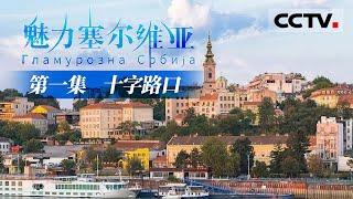 《魅力塞尔维亚》第一集 站在世界十字路口的传奇国家!塞尔维亚具有怎样的魅力吸引着全球各地的人来这里驻足?【CCTV纪录】 - YouTube