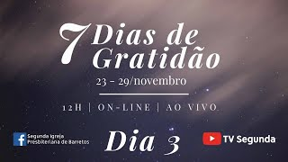 7 Dias de Gratidão - Dia 3