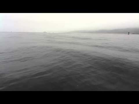 Ocean fishing out of Tillamook Bay