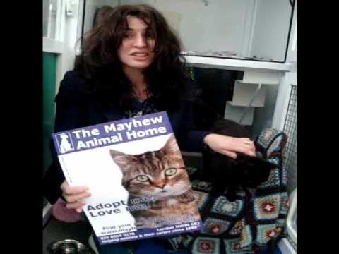 Actress Susan Lynch supports The Mayhew Animal Home