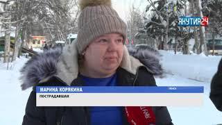 Нашествие бродячих собак в Ленске