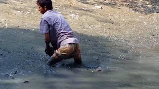 How to catch Big Fish in Bangladesh► AMAZING Catching fish in Bangladesh.....