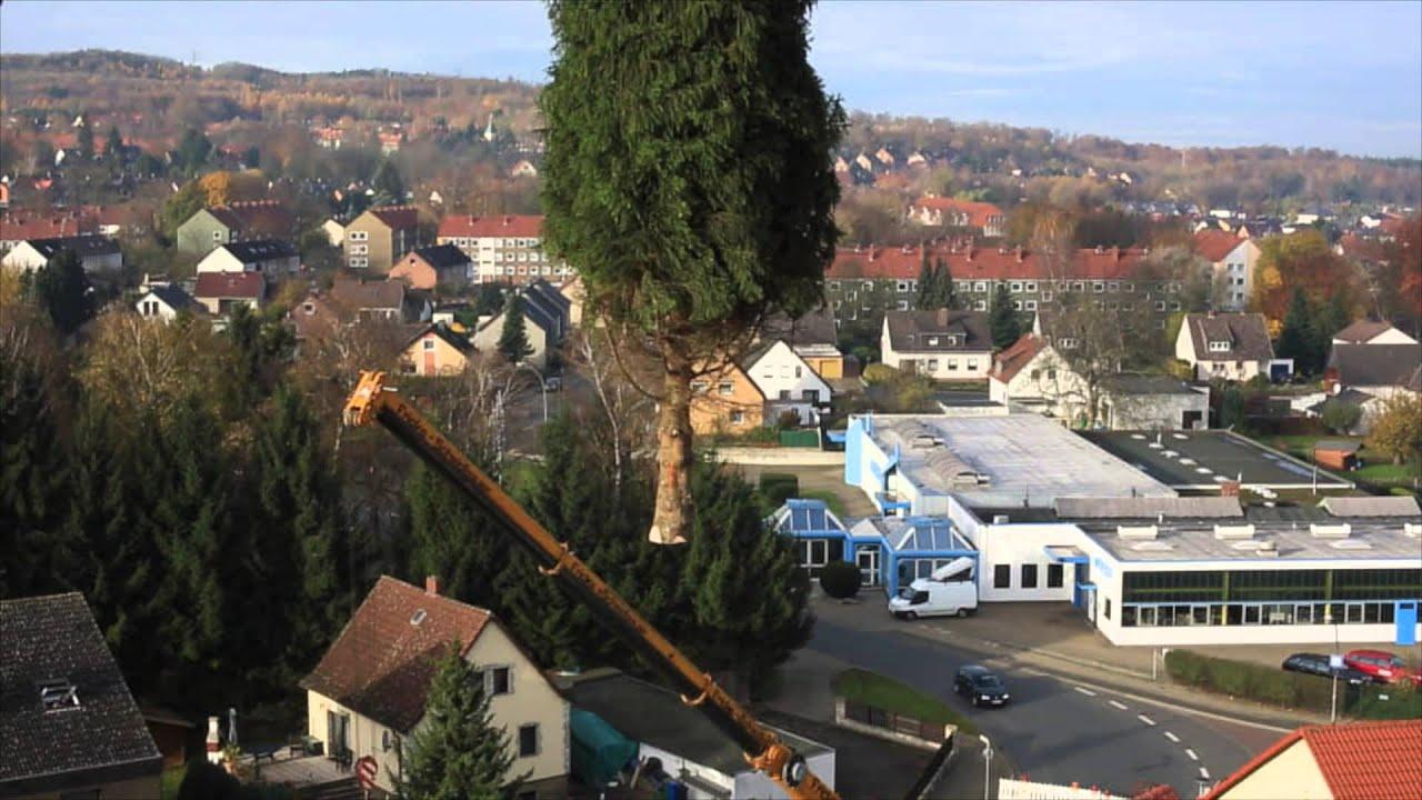 Ulrich Garten  U0026 Landschaftsbau   Jägermeister Weihnachtsbaum 2014