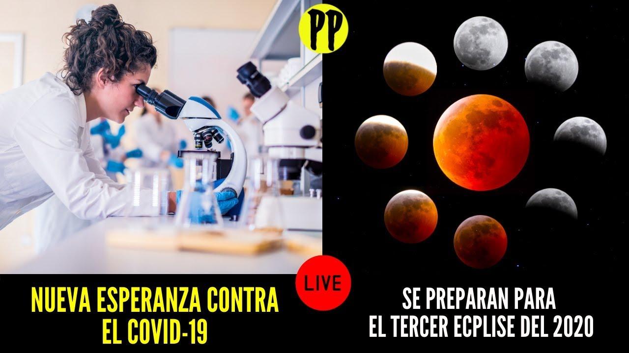 Surge nueva esperanza contra PANDEMIA / Se preparan para Próximo eclipse / PP en Vivo