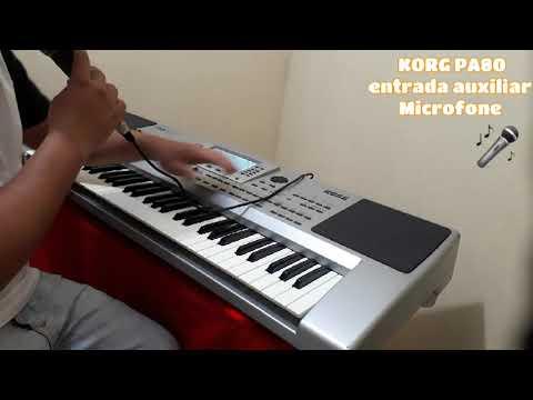 Korg PA80 Entrada De Microfone