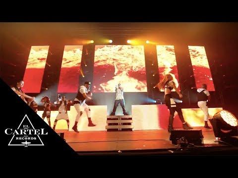 Toulouse, France (2014) [Live]