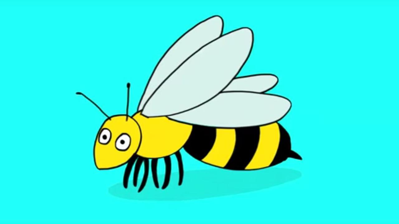 apprendre dessiner une abeille youtube. Black Bedroom Furniture Sets. Home Design Ideas