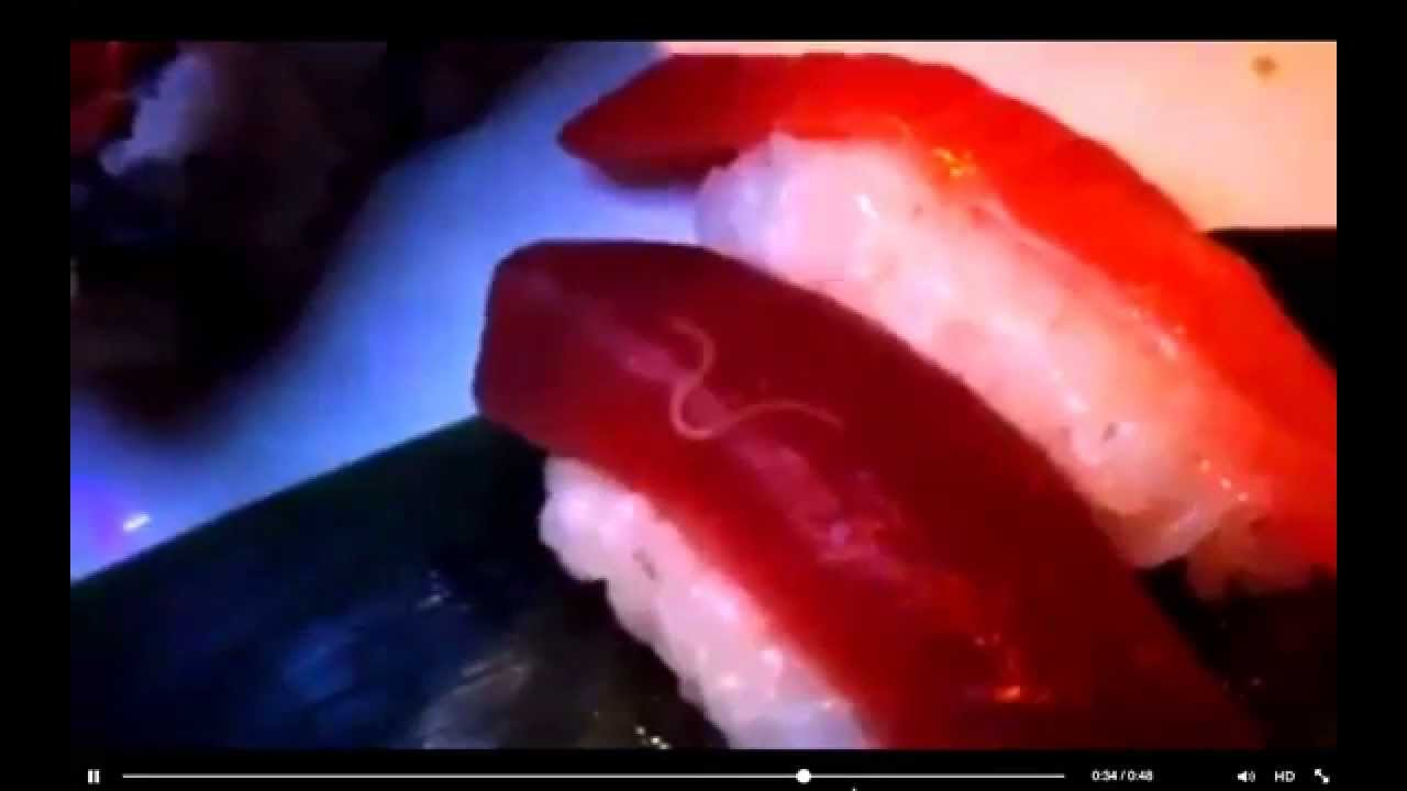 Live Parasite In Sushi Youtube