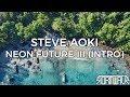 Steve Aoki Neon Future III Intro mp3