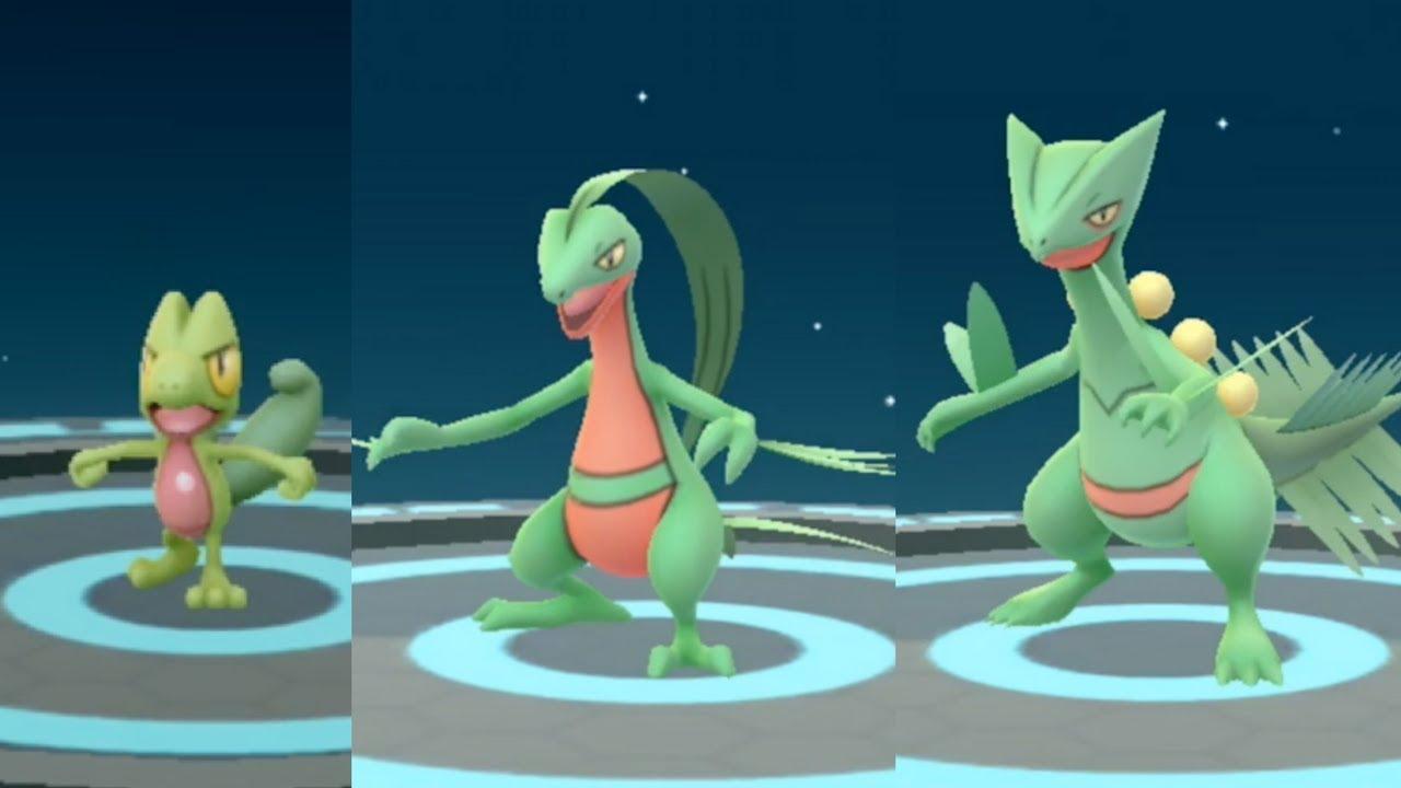 Pokemon Go Treecko to Grovyle to Sceptile Evolution ...
