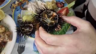 Как кушать морских ежей