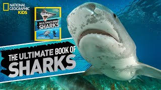 get up close to sharks book club