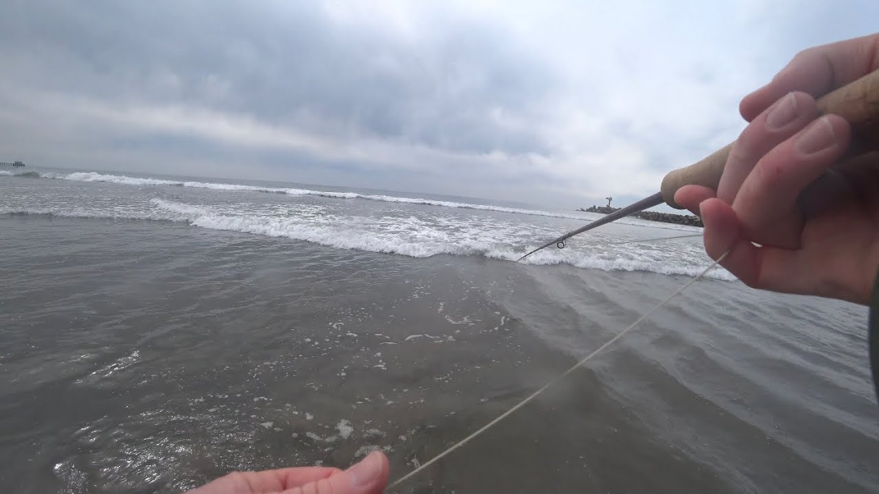 Fly Fishing the ocean SURF in Oceanside, CA - Beach fishing - McFly Angler  Episode 64
