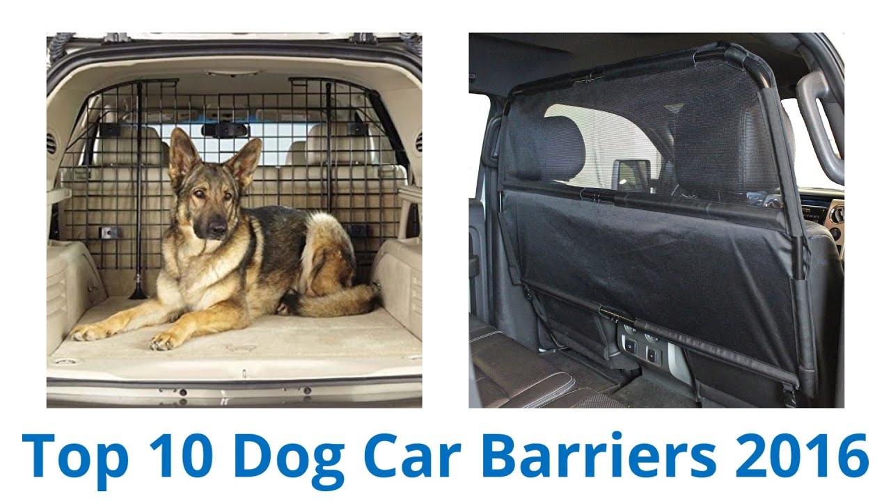 10 Best Dog Car Barriers 2016 Youtube