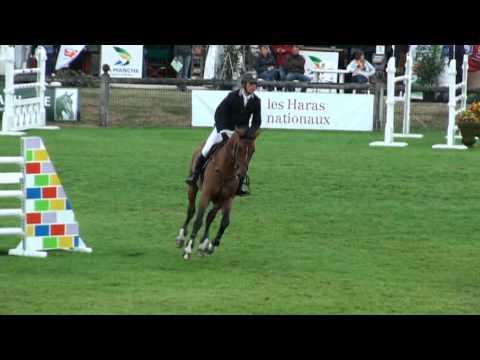 Baixar ♂ Quickly de Kreisker- jumping stallion  (SF) by Diamant de Semilly
