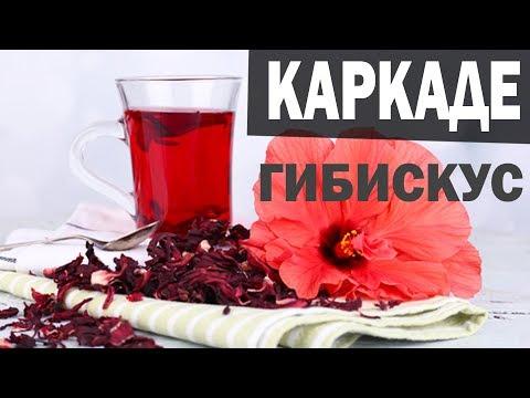 Чай Каркаде Гибискус из суданской розы. Каркаде в АЮРВЕДЕ