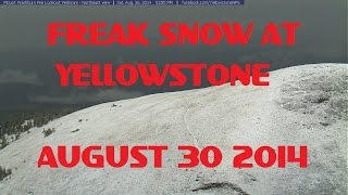 8/30/2014 -- Rare Late Summer SNOW STORM at Yellowstone National Park