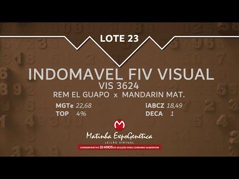 LOTE 23 MATINHA EXPOGENÉTICA 2021