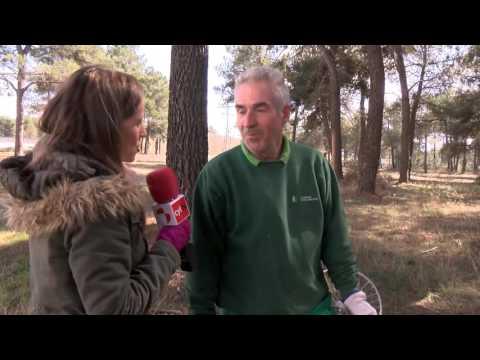 Hecho en Segovia, Resinas Naturales