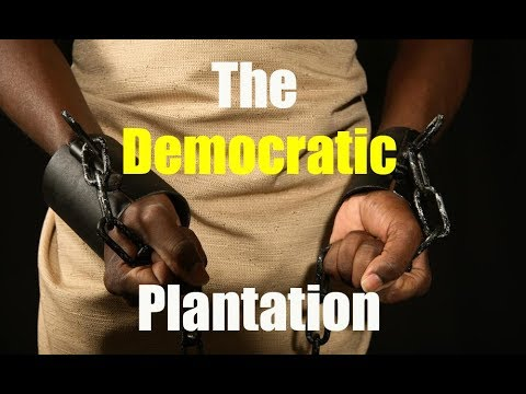 What is the Democratic plantation?