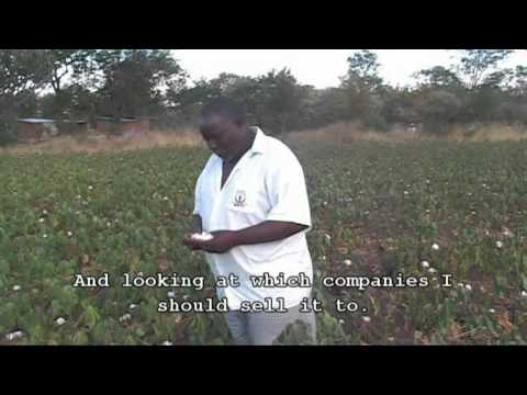 Zimbabwe's Land Reform: voices from the field. Part 5