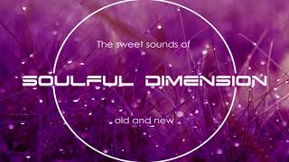 Video Best of Soulful Dimension 3 - Soulful House Mix download MP3, 3GP, MP4, WEBM, AVI, FLV April 2018