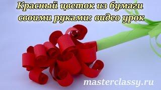 DIY paper flowers tutorial. Красный цветок из бумаги своими руками: видео урок(Приветствую всех любителей рукоделия. И не важно, в какой технике работаете вы, главное, что вы также творит..., 2016-08-09T08:31:50.000Z)