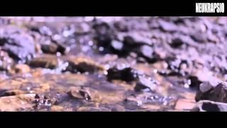 Björk - Ancestors (Video)