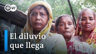 Refugiados climáticos en Bangladés | DW Documental