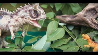 ДИНОЗАВРЫ И ЖИВОТНЫЕ! Маленькие динозавры! Сборник мультиков для детей про динозавров