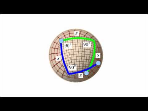 Relativity 7b - differential geometry II
