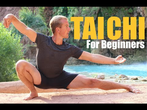 10 Tai Chi Moves for Beginners - 14 Minute Daily Taiji Routi