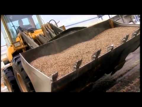 Pellet Manufacturing Process From Forest and Biomass Waste
