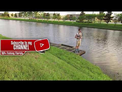 Fishing behind the Academy on Atlantic and Kernan In Jacksonville Florida!