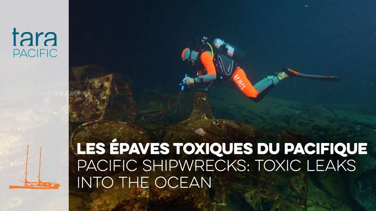 Pacific shipwrecks: toxic leaks into the Ocean