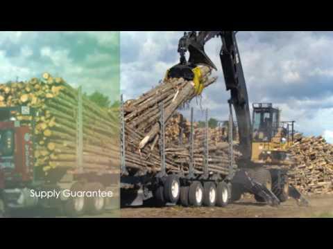 Québec's forestry management system