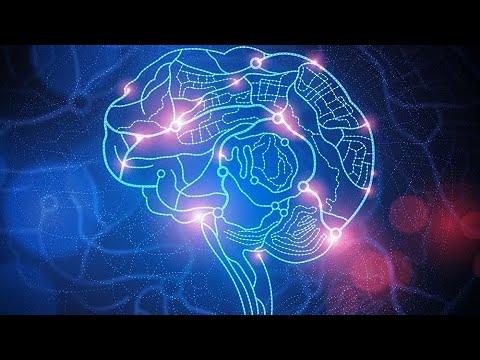 Google e Harvard descobrem mais um segredo do cérebro humano