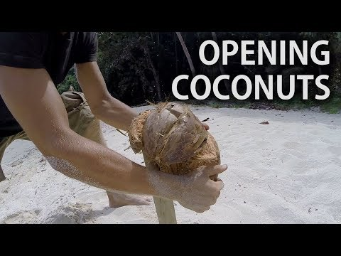 Easiest way to open coconuts on desert islands