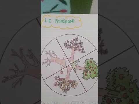 Storia - Le Stagioni (1 Parte)