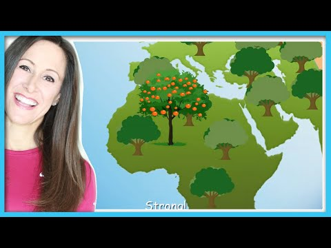 Earth Day Children Song | Plant a Tree | Science | Patty Shukla