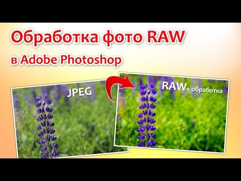 Обработка фото RAW в Adobe Photoshop
