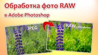 Обработка фото RAW в Adobe Photoshop